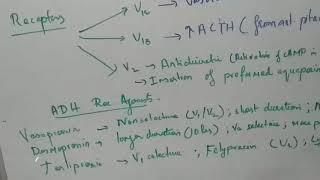 Patofisiologi - Penyakit Crohn (Crohn Disease).
