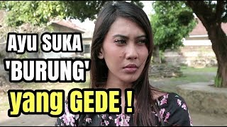 Download Video AYU SUKA BURUNG YANG GEDE! MP3 3GP MP4