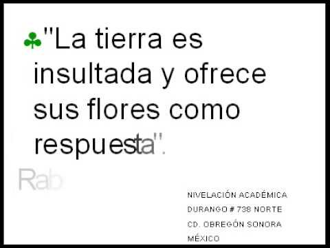 Frases célebres ecológicas - YouTube
