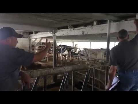 COOPERATORS FARM INSURANCE  HOW THEY INSPECT A DAIRY FARM