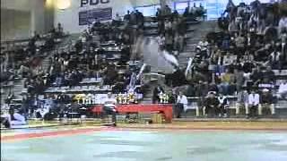 Трюки и аркробатика в боевых искусствах