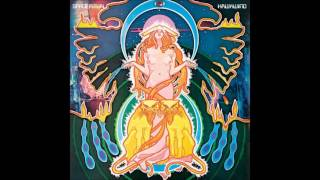 Hawkwind - Down Through The Night