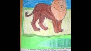 Раскраски животных.wmv