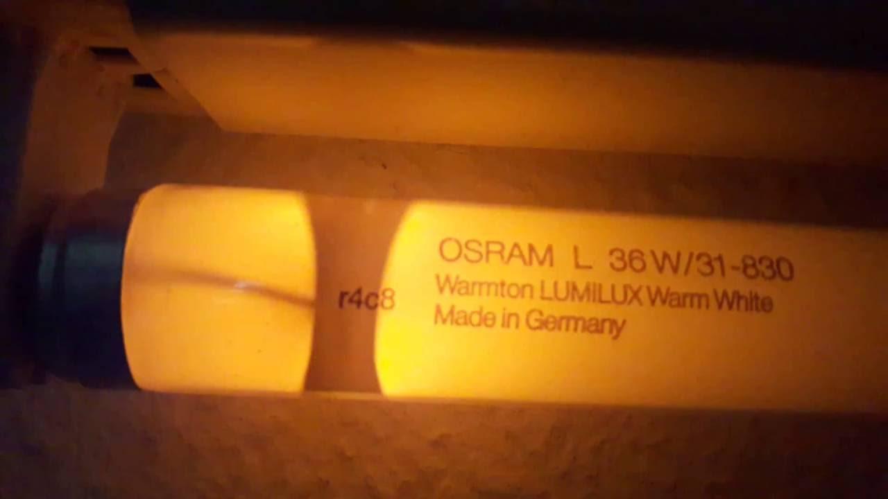 OSRAM TUBE L 58W//830 LUMILUX WARM WHITE