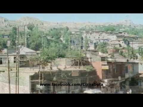 Salihê Şirnexi - HOY HOY MEMO