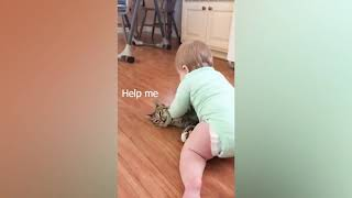 Baby and Cat Fun and Fails #1 - baby baby