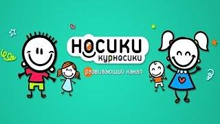 Дитячий канал Носики Курносики - Розвиваючі відео для дітей
