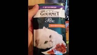 Посылка с едой для кошки Лоры