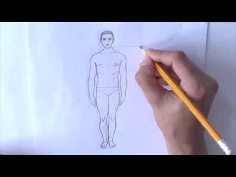 Фигура человека Рисование Картинки по изо