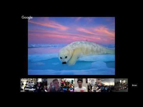 Explorer Classroom   Brian Skerry: Photojournalist