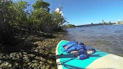 Paddle Boarding Jupiter, Fl