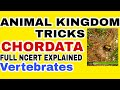 NEET/AIIMS 2019 ANIMAL KINGDOM CHORDATA (vertebrates) Tricks Lecture 12  Full NCERT based