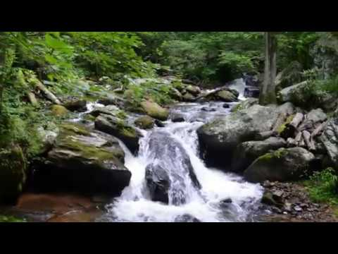 Visit Anna Ruby Falls, Waterfall in Georgia, United States - Best Waterfall