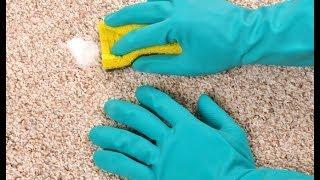видео Как удалить адгезив из ковра: очистка и очистка