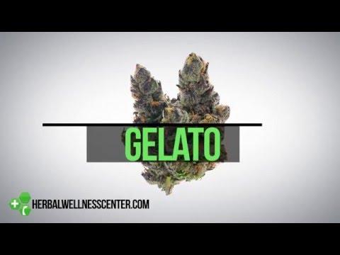 Gelato Strain Review