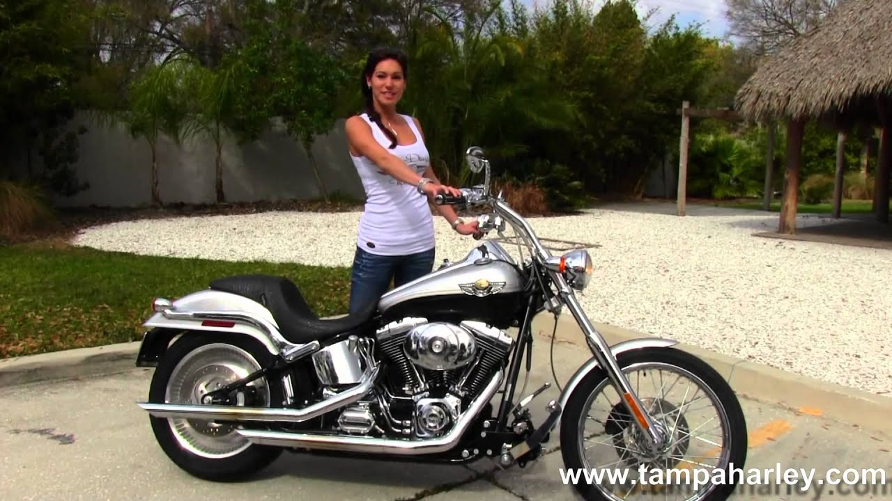 2003 HarleyDavidson FXSTD Softail Deuce for sale  YouTube