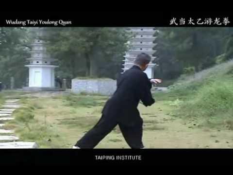 Wudang Taiyi Youlong Quan [武当太乙游龙拳]