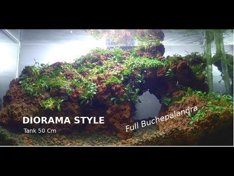 aquascape-#1-low-budget-aquascaping- -diorama-style- -tema-bukit- -tanpa-co2- -arno-tri-aquatic
