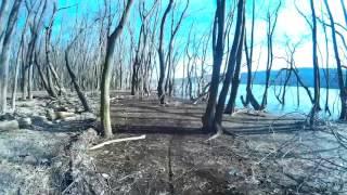 muddy running backwards pov | Jay Last