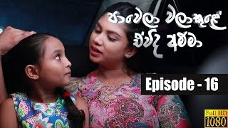 Paawela Walakule | Episode 16 05th October 2019 Thumbnail