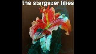 The Stargazer Lilies We Are The Dreamers