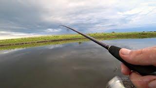 После этой РЫБАЛКИ я поверил в эти ПРИМАНКИ! Рыбалка на спиннинг.