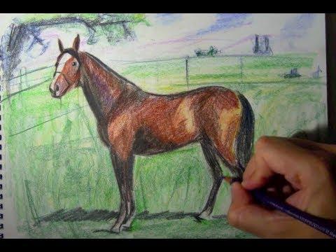 Comment dessiner un cheval avec des crayons de couleur youtube - Dessiner cheval ...