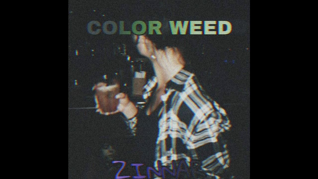 COLOR WEED - ZINNAR