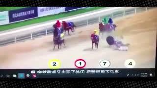 Japonya'da Düzenlenen At Yarışında İnanılmaz Bir Kaza