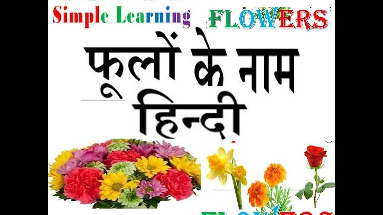 Flowers Name Chart English To Hindi Youtube