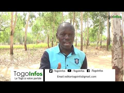 Togo: le Choix d'Agbeyome kodjo n'est pas mauvais