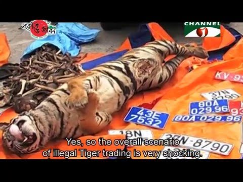 Nature and Life - Episode 207 (Illegal Wildlife Trading)