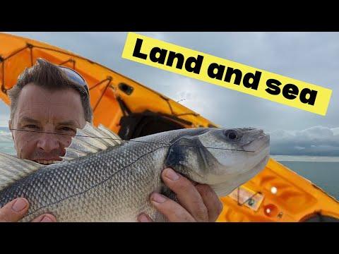 Bass, Mackerel And A Gurnard - Sea Fishing Vlog July 2019