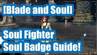 [Blade and Soul] Soul Fighter Soul Badge Guide!