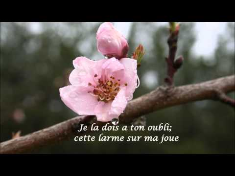 Rendez-vous d'Automne - Francoise Hardy (HD) wiith French lyrics & translation