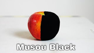 Musou BlackThe (New) World's Blackest Paint Turns Anything Into A Shadow