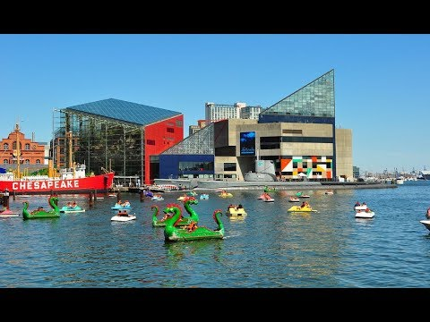 10 Best Tourist Attractions In Baltimore