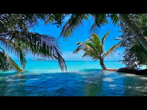 Música Relajante - Naturaleza - Relajarse, Dormir