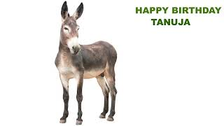 Tanuja  Animals & Animales - Happy Birthday