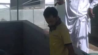 Tilapia artificial eggs incubation at chilya fish hatchery sindh pakistan.flv