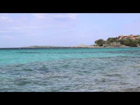 Caribbean Music Compilation