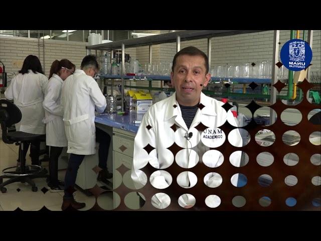 Lentilla biodegradable para tratamiento de la uveítis