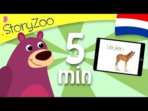 Babydieren • Kinderen Leren Eerste Woorden • Nederlands