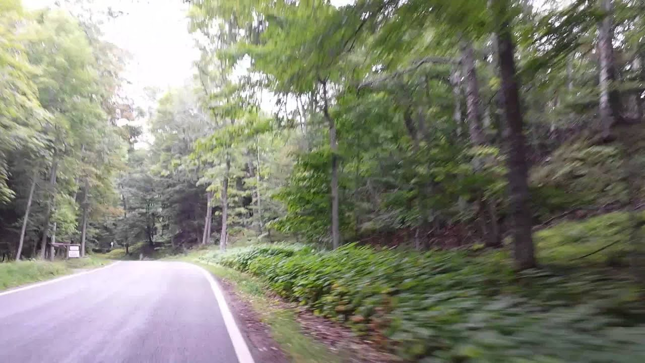 Tunnel of Trees Harbor Springs Michigan Highway 119 - YouTube