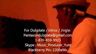 Christopher Martin - Vibes Is Right Dubplate By Pantason