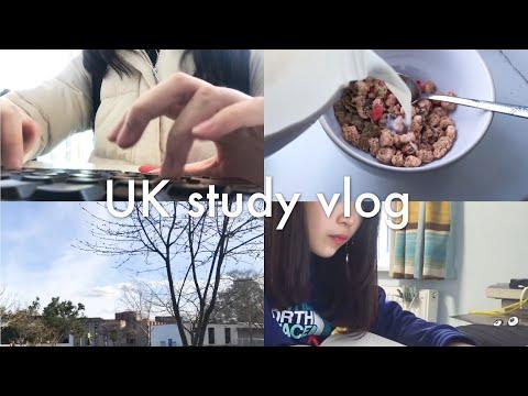 🇬🇧 UK Study Vlog / 英国留学生活 📕 上课日常✏️ / A Day of University Student