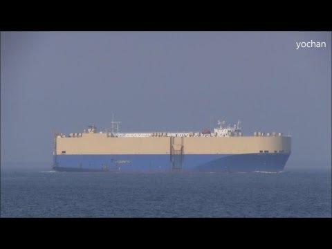 Car Carrier / Ro-ro ship: TOPAZ ACE (CIDO SHIPPING) IMO: 9077836, MMSI: 354646000