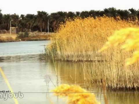 بحيرة تماسين . صور فنية