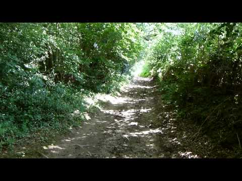The Serpent Trail: Petworth to Fittleworth 30 July 2014