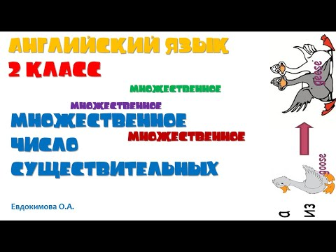 Английский язык 2 класс Множественное число существительного Евдокимова О.А.